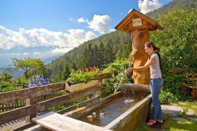 Brunnen Gapphof Reith